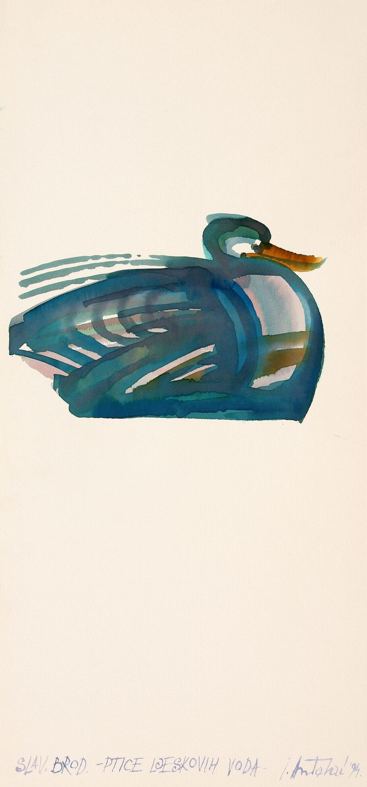 Ivan Antolčić(1929-2019.) Ptice ljeskovih voda