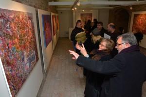 noc muzeja 2017 slavonski brod gugsb  (41)